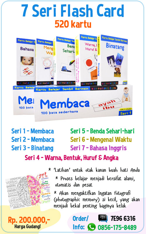 flash card bayi dan anak
